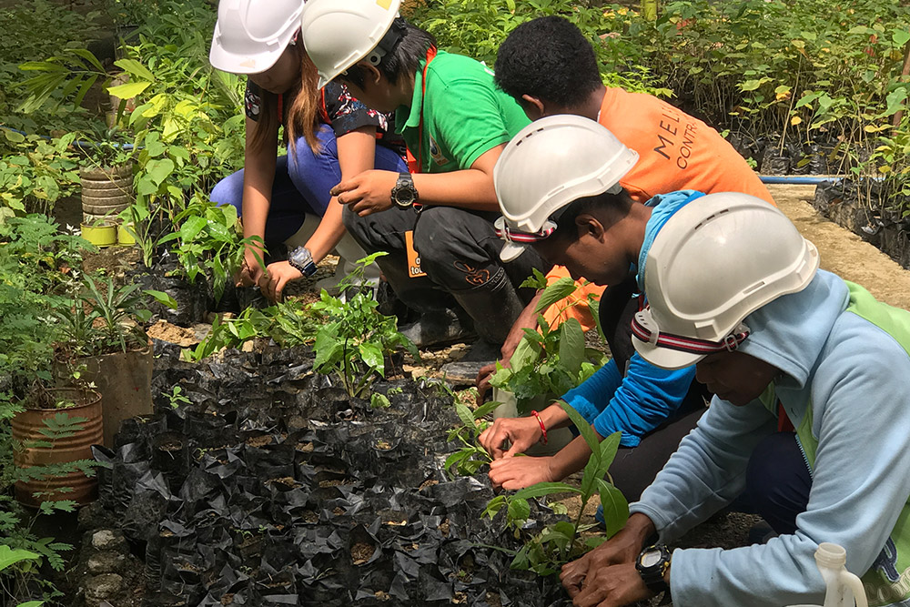 Trees for the Future in Philippines